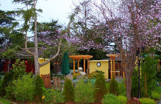 Pacific Grove - TripAdvisor