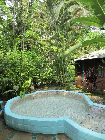 Casas La Selvatica: yard with wading pool