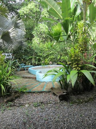 Casas La Selvatica: yard