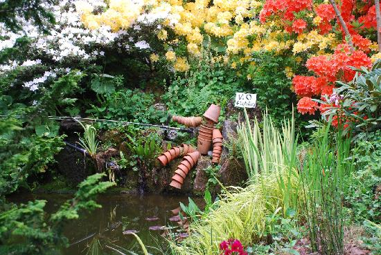 Plant world gardens newton abbot 2018 all you need to for Japanese pond plants