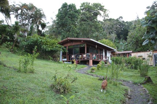 La Ceiba Tree Lodge: Frühstücksraum