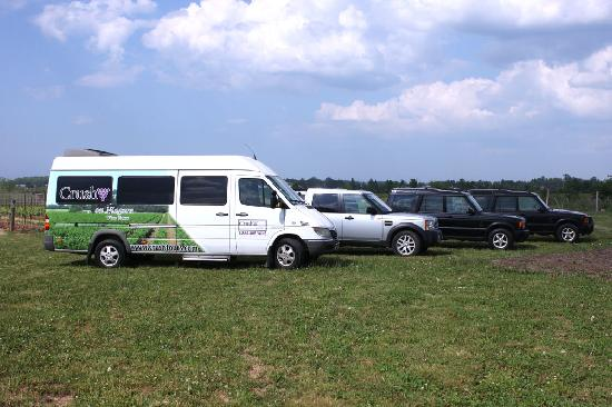 Crush On Niagara Wine Tours: Some of Crush on Niagara's touring vehicles.