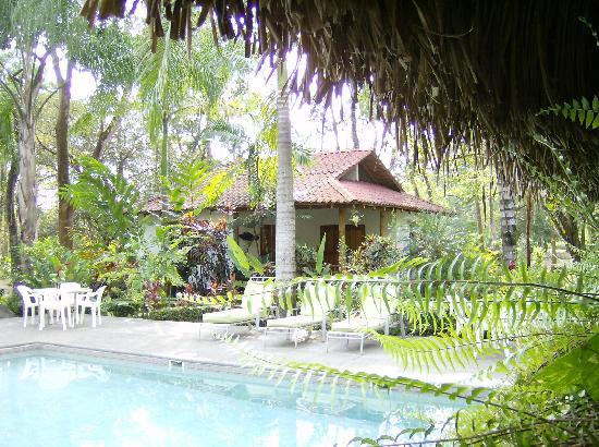 Hotel La Palapa Eco Lodge Resort: Pool gardens