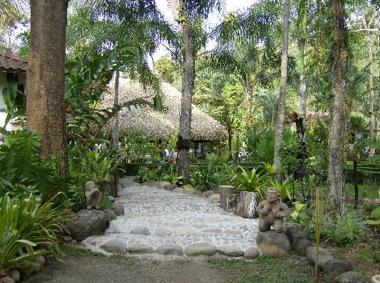 Hotel La Palapa Eco Lodge Resort: Garden views