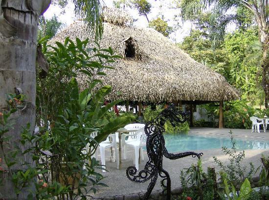 Hotel La Palapa Eco Lodge Resort: Swimming pool views