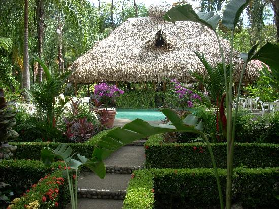 Hotel La Palapa Eco Lodge Resort: Pool Bungalow Villa views