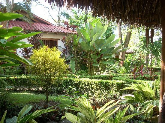 Hotel La Palapa Eco Lodge Resort: Gardens -  La Palapa Ecolodge Resort.
