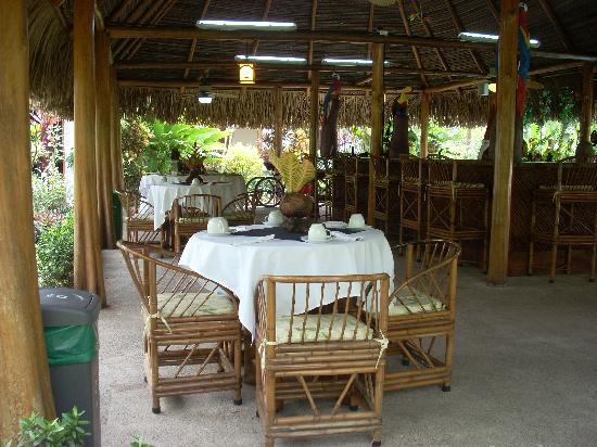 Hotel La Palapa Eco Lodge Resort: Pool Breakfast -  La Palapa Ecolodge Resort.