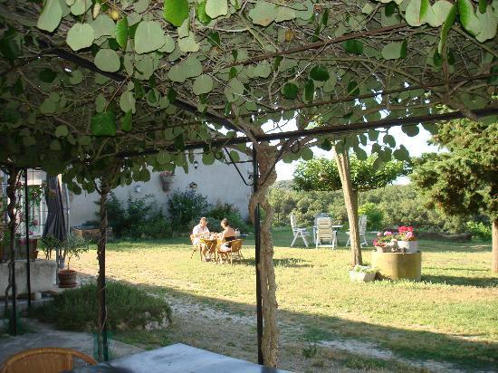 Domaine de Caraman: Gardens
