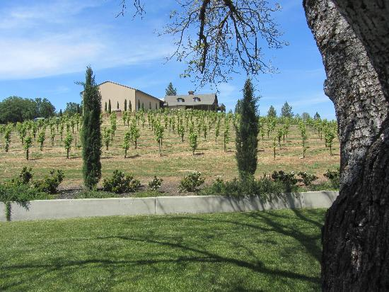Il Gioiello Winery and Morse Wines: The old barn and new barrel room on the Tuscan themed property.