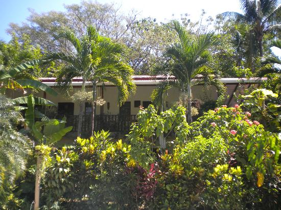 Hotel Belvedere - Playa Samara: Habitaciones frente a la pisina
