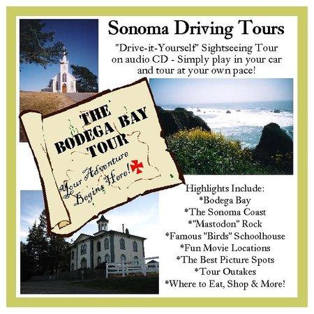 Bodega Bay Tour