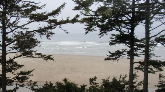 Tyee Lodge: View from the Yaquina Room