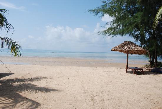 Big Easy: The beach