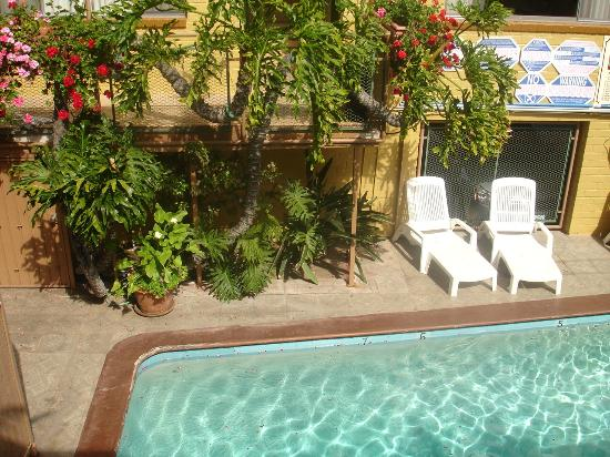 Hollywood Downtowner Inn: Piscine