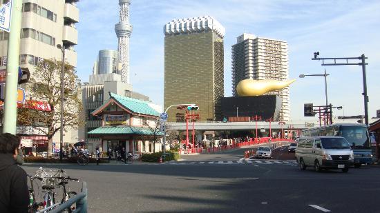 Go Tokyo - Day Tours: Tokyo