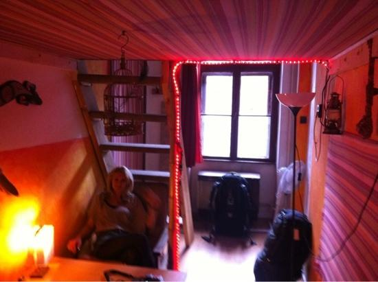 Lavender Circus Hostel: our room, the ladder on the left is to get up to the bed! so awesome