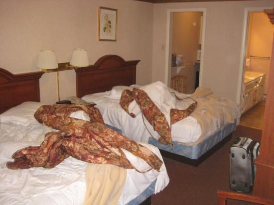 Rodeway Inn & Suites Hershey: Room 51 Morning before leaving