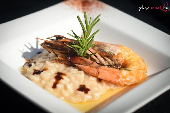 Mayan Bistro: Grilled Jumbo Shrimp and Risotto