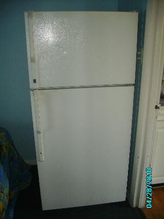 Viking Ocean Front Motel: Fridge in room