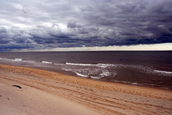 Ocean Vista Resort : Pristine beaches