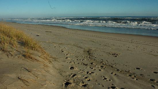 Ocean Vista Resort : Pristine beach