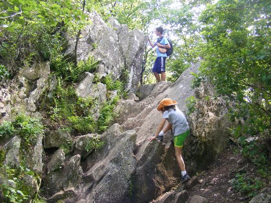 Bearfence Mountain: rock scramble