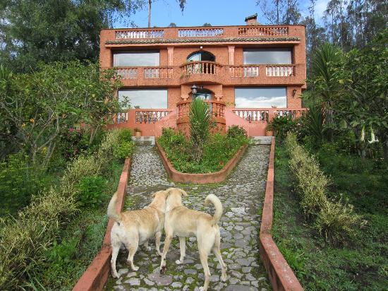 Ali Shungu Mountaintop Lodge: Main lodge at Ali Shungu
