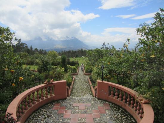 Ali Shungu Mountaintop Lodge: Beautiful grounds