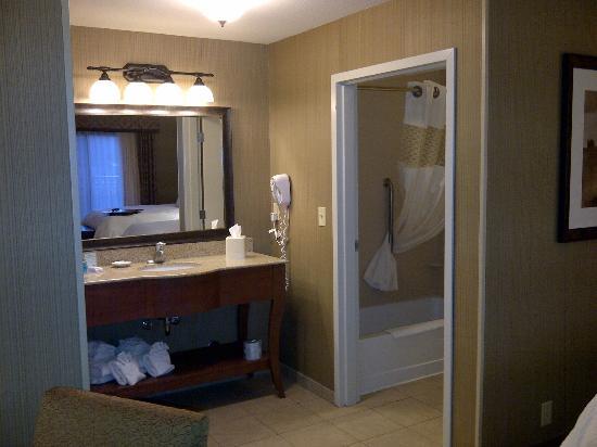 Hampton Inn & Suites Show Low-Pinetop: Vanity of Bath