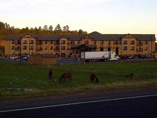 Hampton Inn & Suites Show Low-Pinetop : View of Hotel Driving In