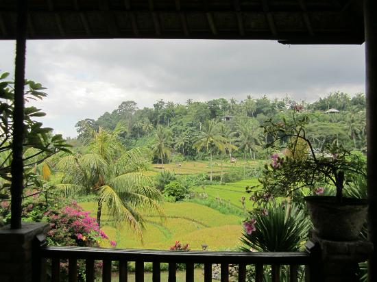 Puri Sawah Bungalows: view from balcony