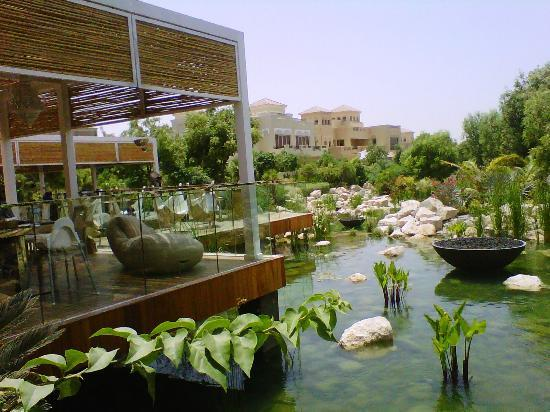 A view of the pond and garden from the outside at the farm for Garden pool dubai