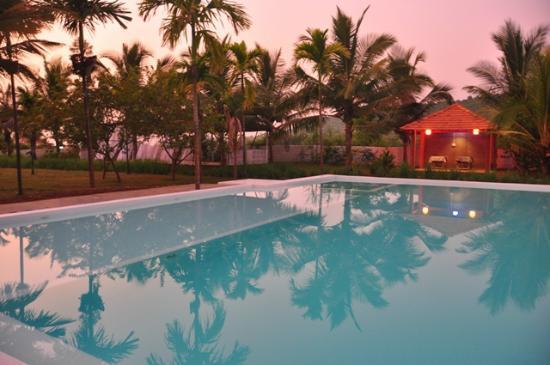 Ashvem Beach, India: Swimming Pool @ Aquatica Resort