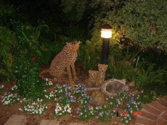 Highlands Lodge: Park like Garden