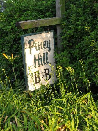 Piney Hill Bed & Breakfast: Sign in early morning