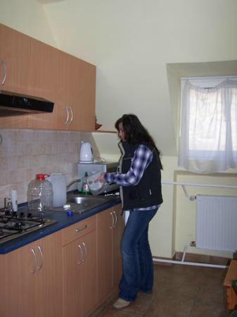 Afrodite Apartmanok: kitchen