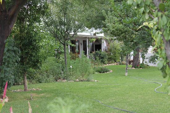 Karoo Khaya: Garden