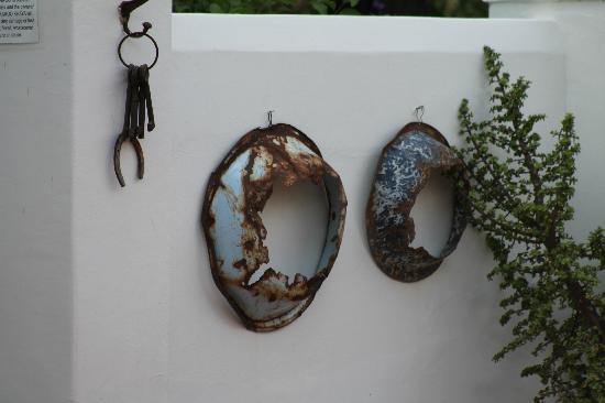 Karoo Khaya: Garden wall