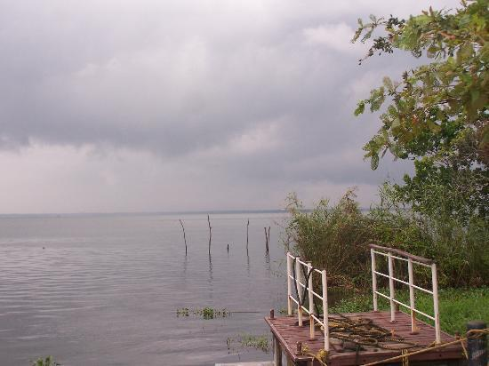 The Park on Vembanad Lake: view