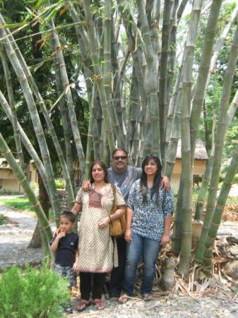 WelcomHeritage Corbett Ramganga Resort: Ground