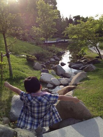 Arimarokusai : 庭も素敵です