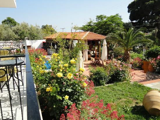 Filokalia Apartments: Bar and grounds