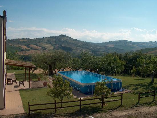 Azienda Agrituristica Terre Del Sole: piscina de Il torrino