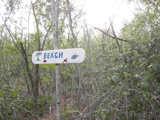 Shannas Cove Resort: Just a few minutes walk off the beaten track to yet another secluded beach!
