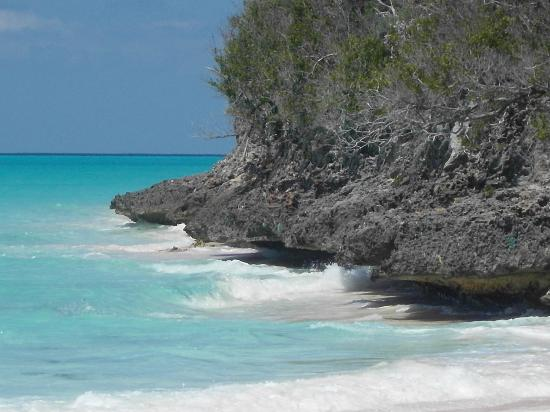 Shannas Cove Resort: Take a wade around here to find another secluded beach!