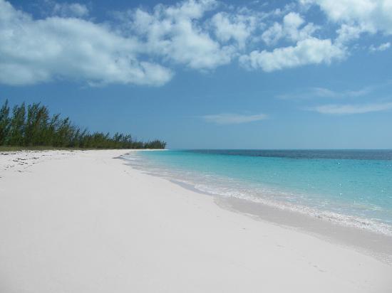 Shannas Cove Resort: Port Royal