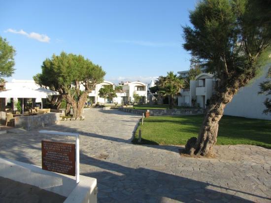 Agapi Beach Hotel: Gardens