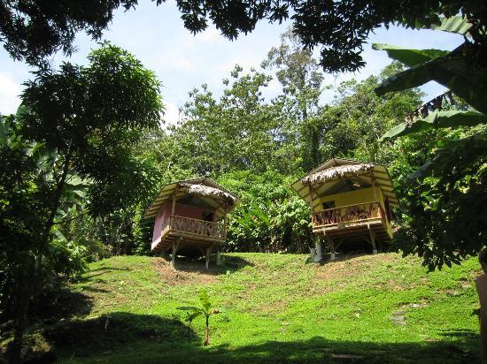 Manu Yoga Village: cabins