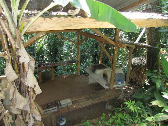 Manu Yoga Village: community kitchen